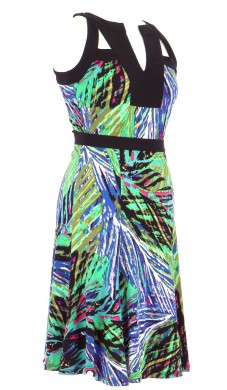 Vetements Robe BCBG MAX AZRIA MULTICOLORE
